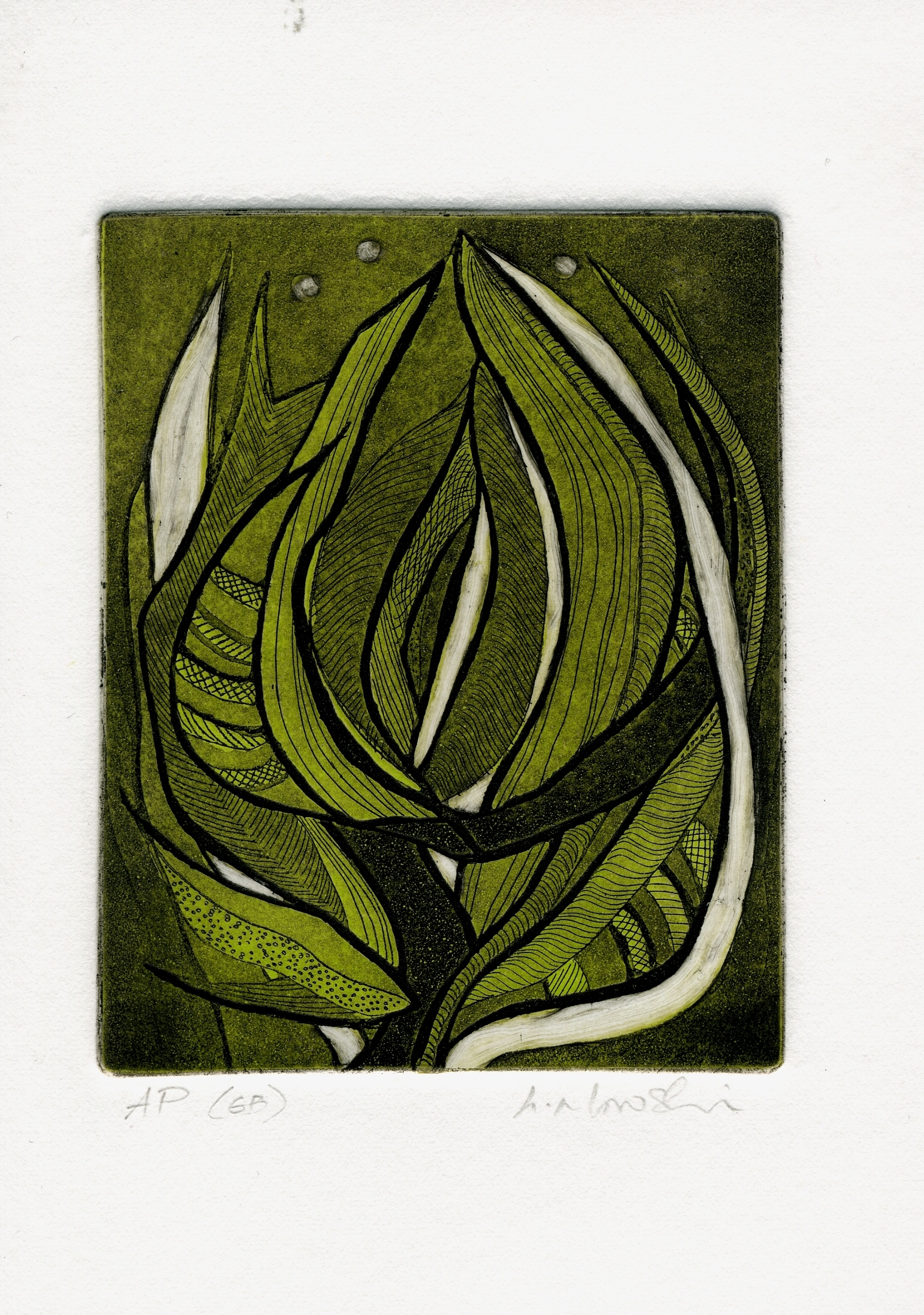 Budding-in-Gr-and-Bk_-intaglio-limited-edition