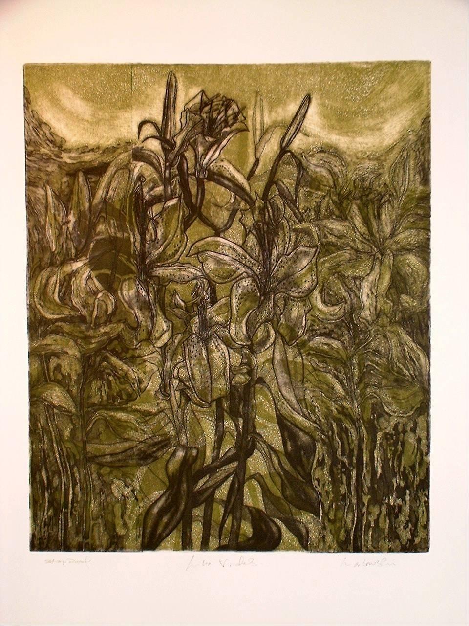 Lilia-Virides-3-plate-etching-460-x-380, by the artist Helena Orlowski